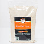 Breadfruit Flour